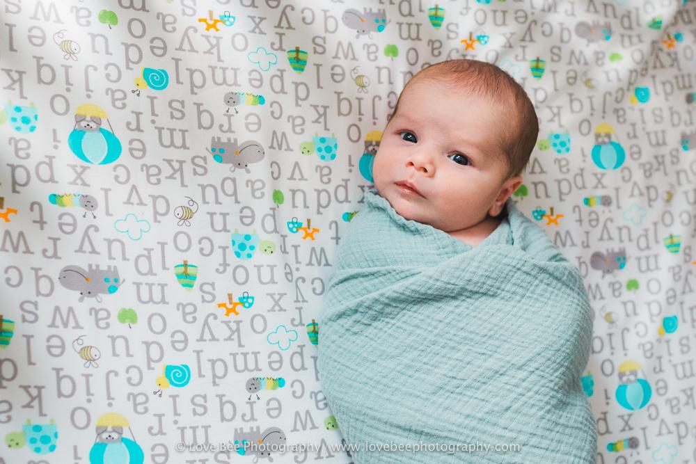 Newmarket Newborn Photographer - Love Bee Photography-6.jpg