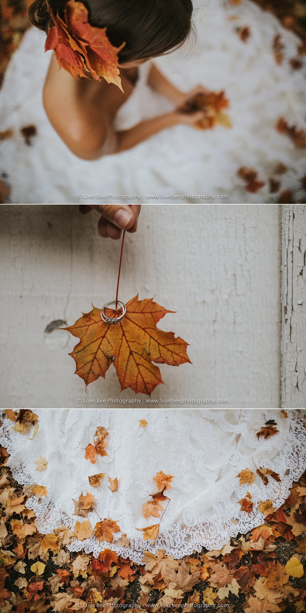 Georgetown Autumn Bridal Shoot-1-5.jpg