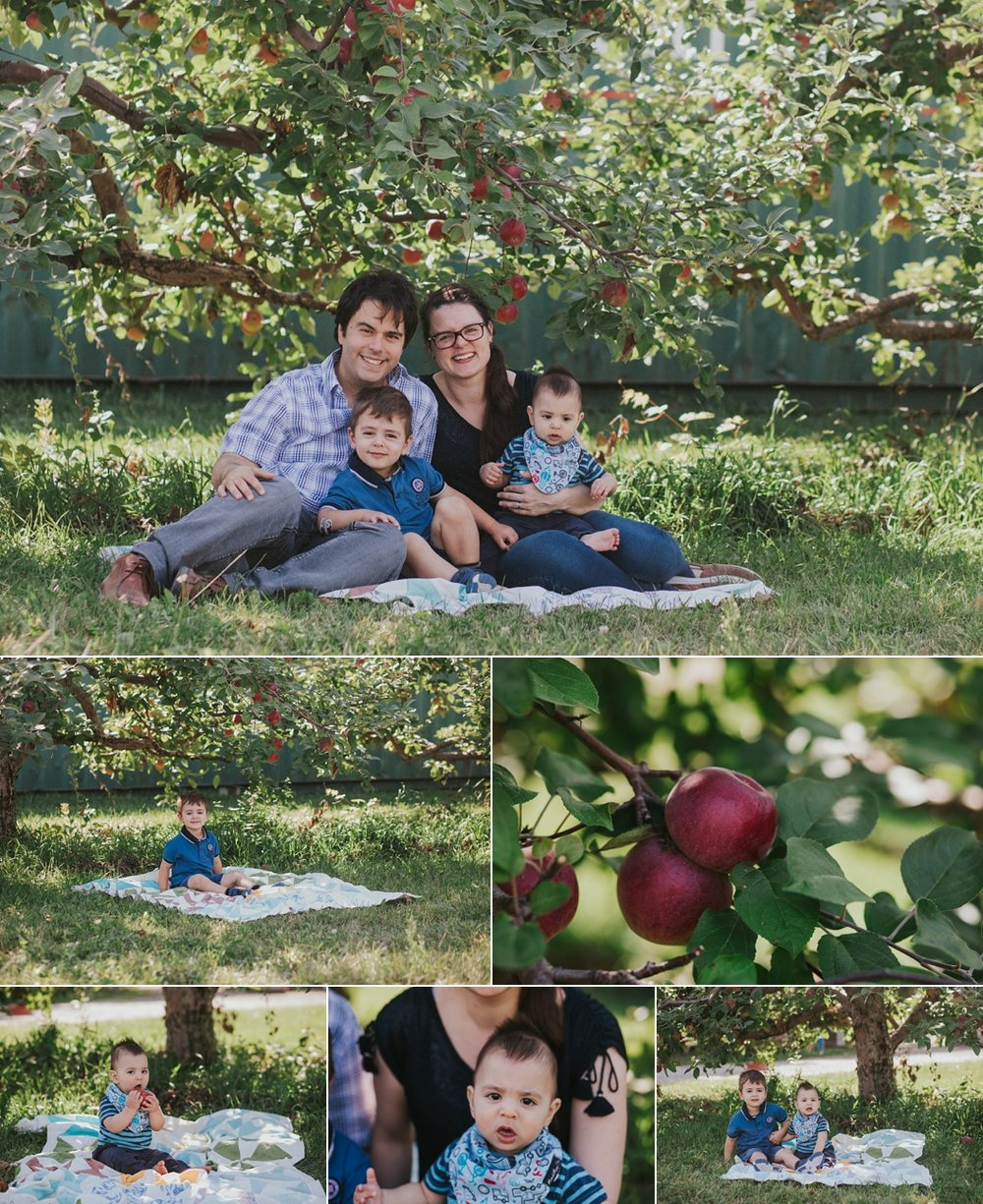 family playing at apple orchard in Georgetown ontario. Family is sitting on a blanket
