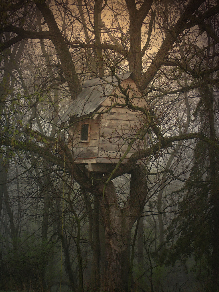 thehermitage :     (via  thecolorofmyday )