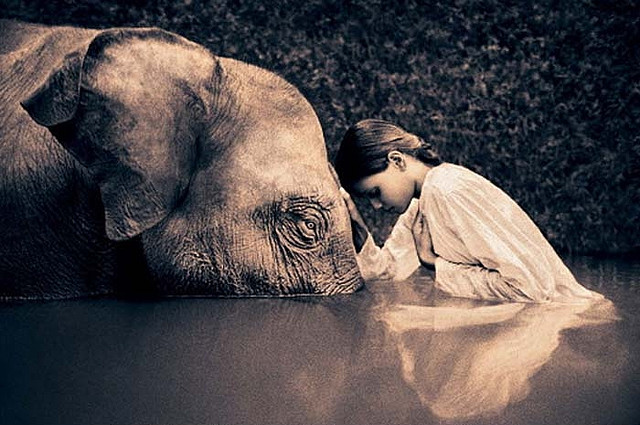 ramacharaka :      Image by  Gregory Colbert   (by  Art Images Directory )