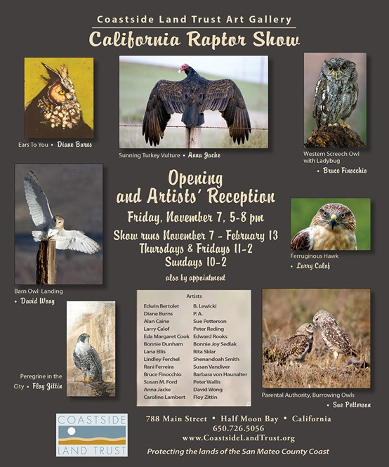 Flyer for the 2nd Annual California Raptor Art Show