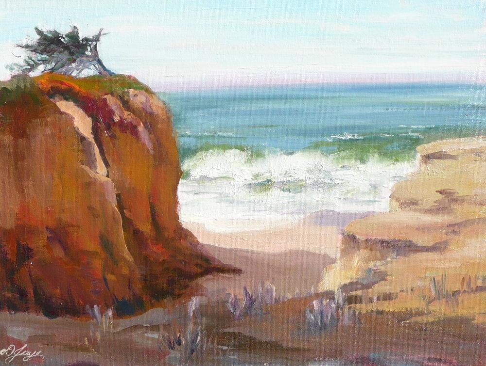 Diana Jaye - Poplar Beach Cypress