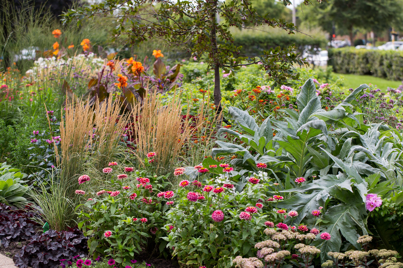 Annual Plant Maintenance Phillips Garden