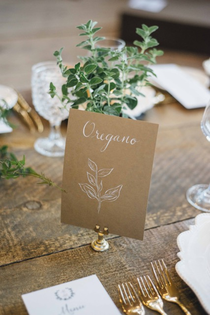 LUSTRE-EVENTS-CAMBIUM-FARMS-HIGH-RES-109.jpg