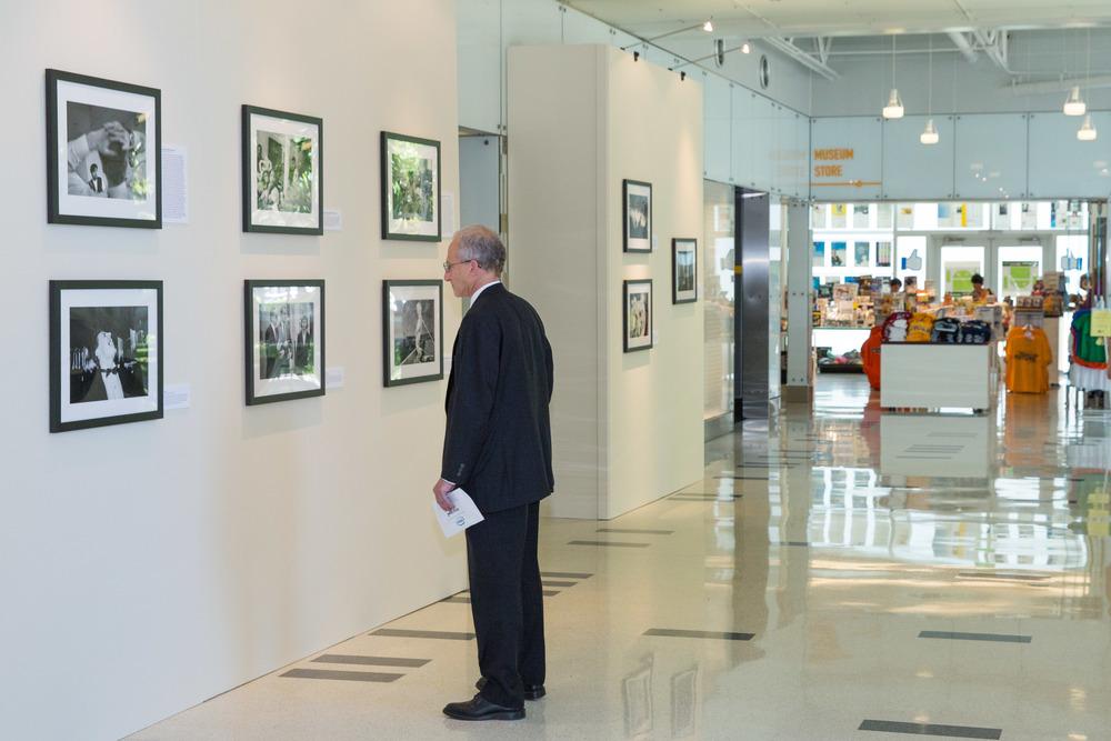 DM Gallery-006.jpg