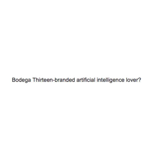 Bodega Thirteen's first publication will hit the store June 1st. Featuring work from Reilly Hodgson, Rima Sater, Kelsey Stasiak, Trevor Wheatly, Jake Sherman and Elizabeth Arlow in conversation with Tiana Reid.