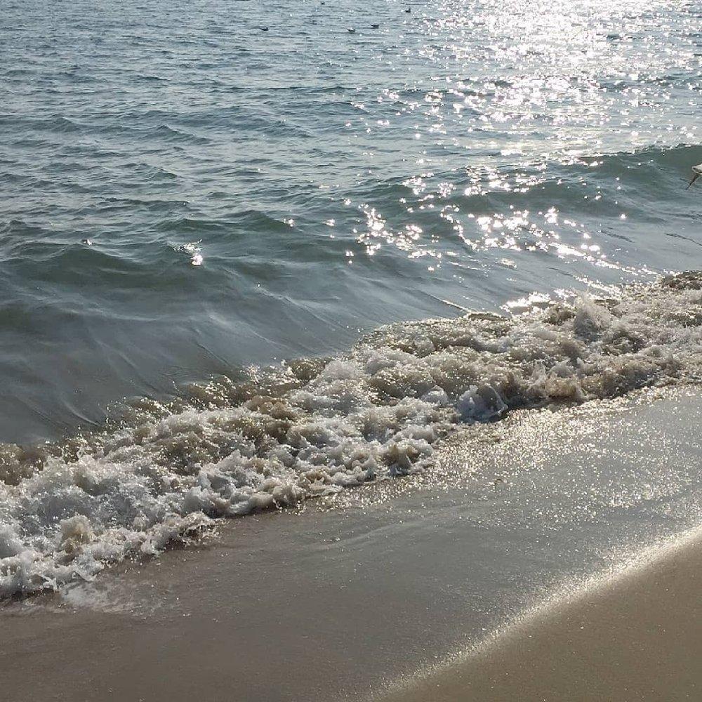 bodegathirteen_mondaymood_waves