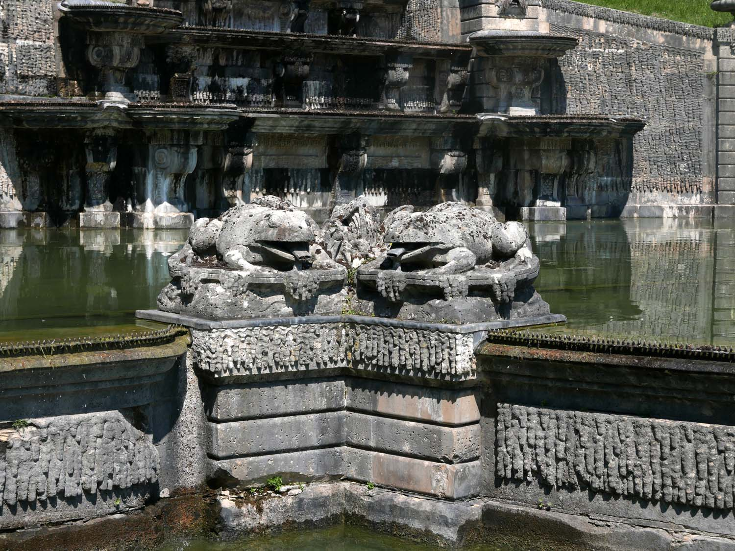 Fountain frogs