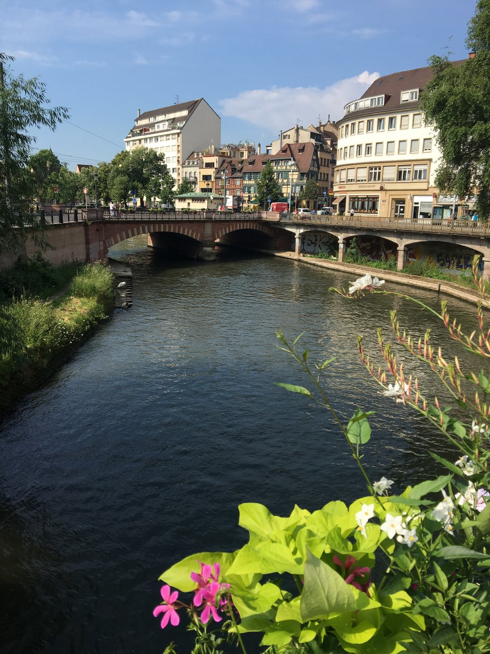 the river in Strasbourg