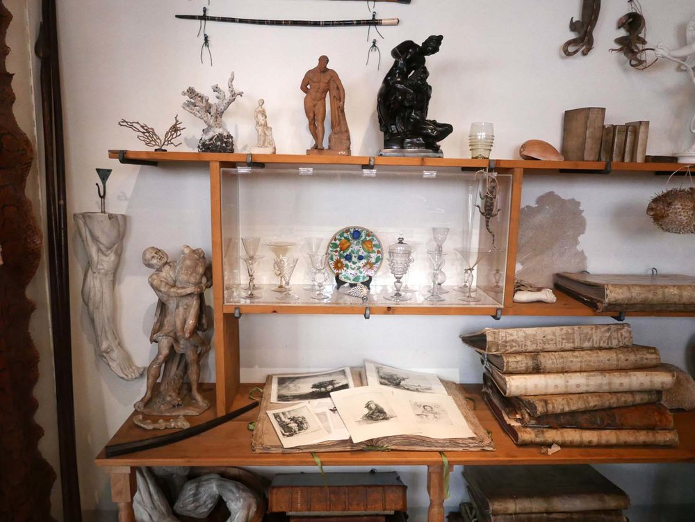 Rembrandt's cabinet of curiosities