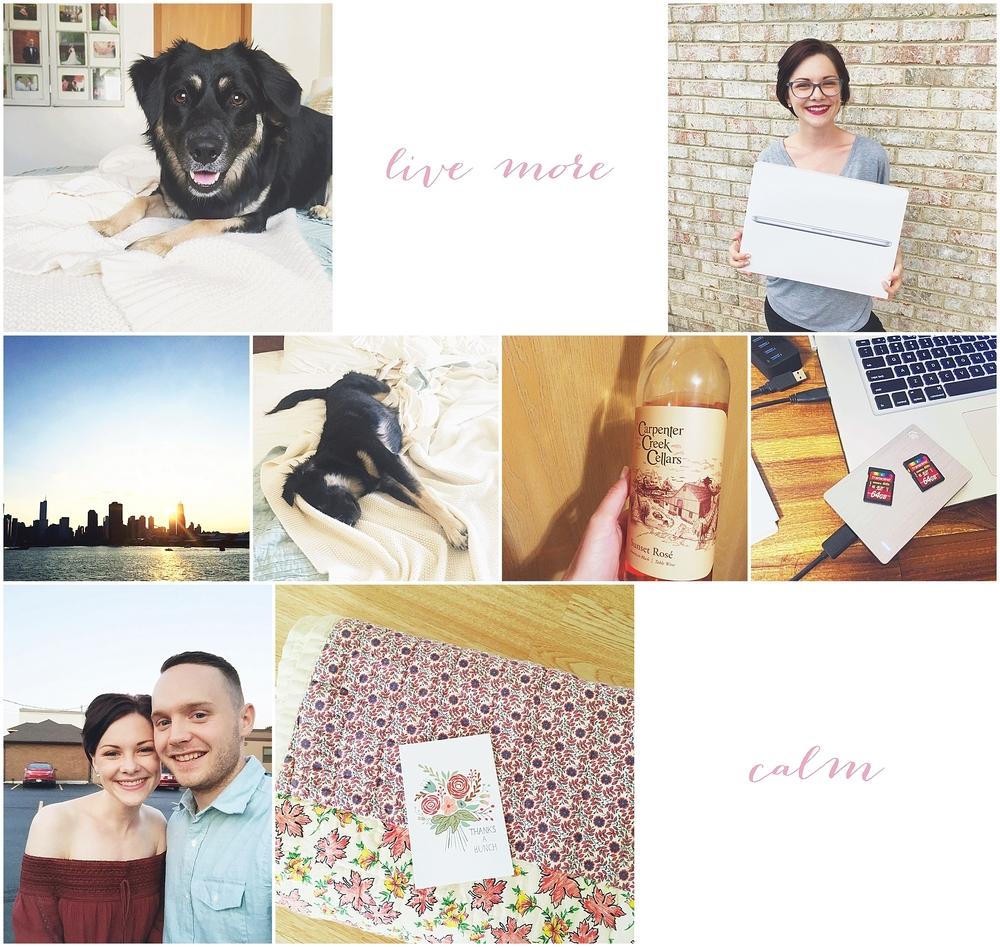 By Kara - Kara Evans - My Life Mondays - June 2016 Recap - Monthly Instagram Photo Recap - Wedding Photographer Fun