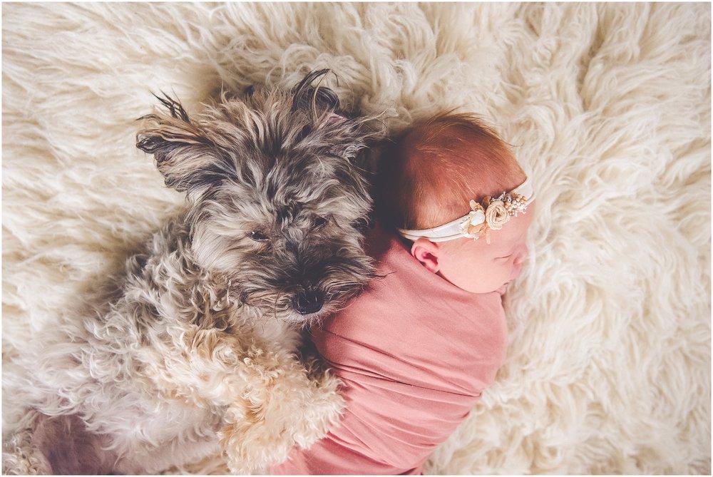 Kara Evans Photographer - Central Illinois Family Photographer - Lifestyle Newborn Family Session - St. Louis Travel Session Photographer