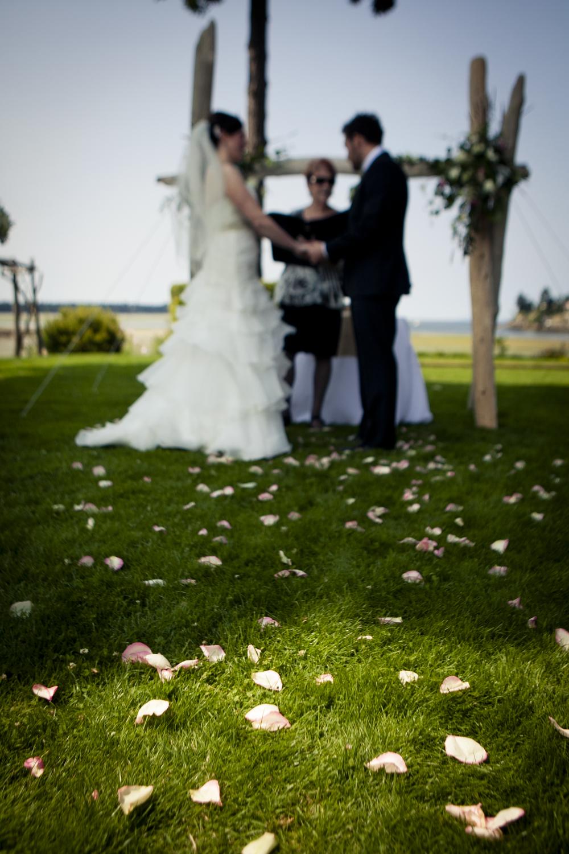mavrikos wedding-198-1.jpg