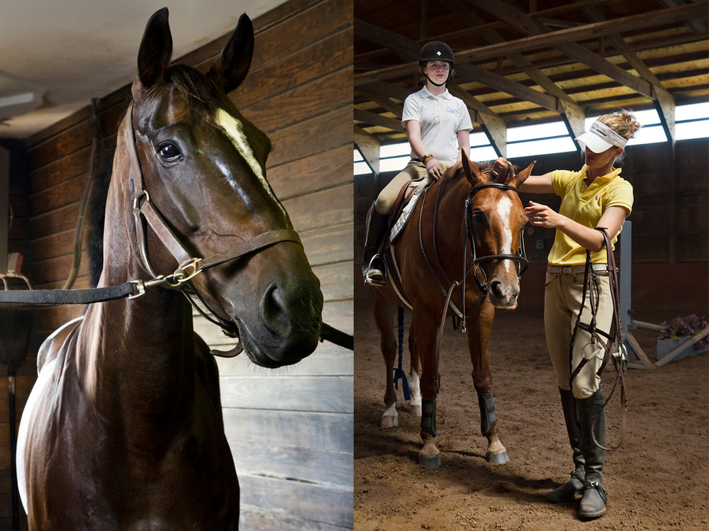 eden-equestrian.jpg