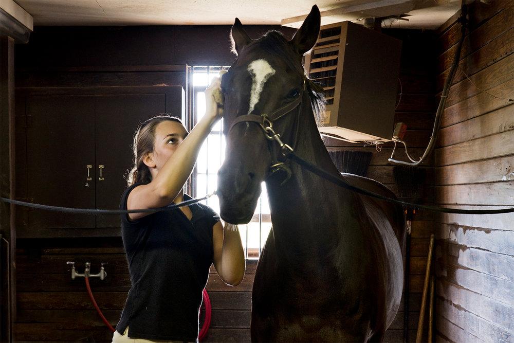 eden-equestrian3.jpg