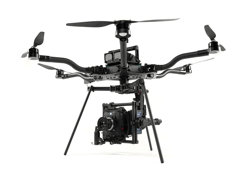 wild_rabbit_FREEFLY_ALTA_6_DRONE.jpg
