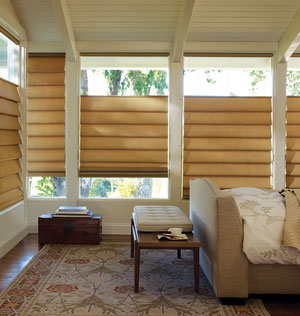 1A.4.AlustraVignetteModern Roman Shades.png