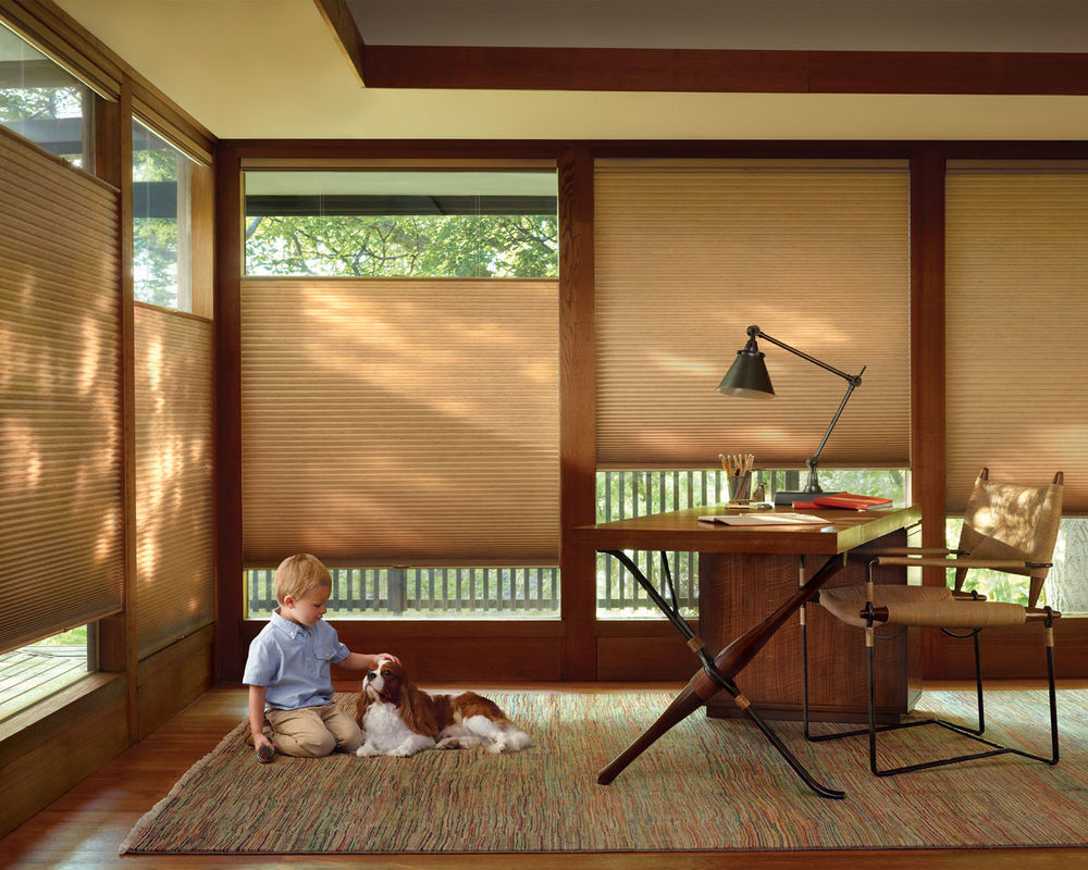 <p><strong></strong>Duette Architella Honeycomb Shades