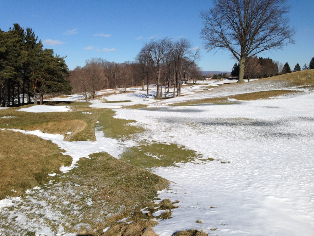 To all my friends and family back in the Midwest and Northeast, Spring is coming! Yahnundasis CC, New Hartford, NY