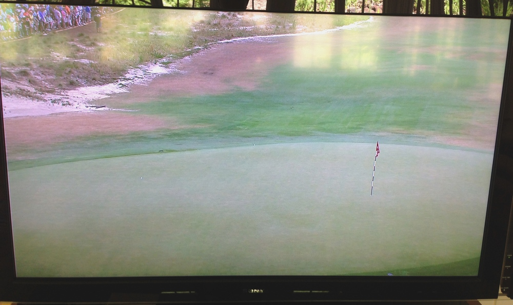 Blurred lines--it almost does look like Open Championship course when you crop out the trees.