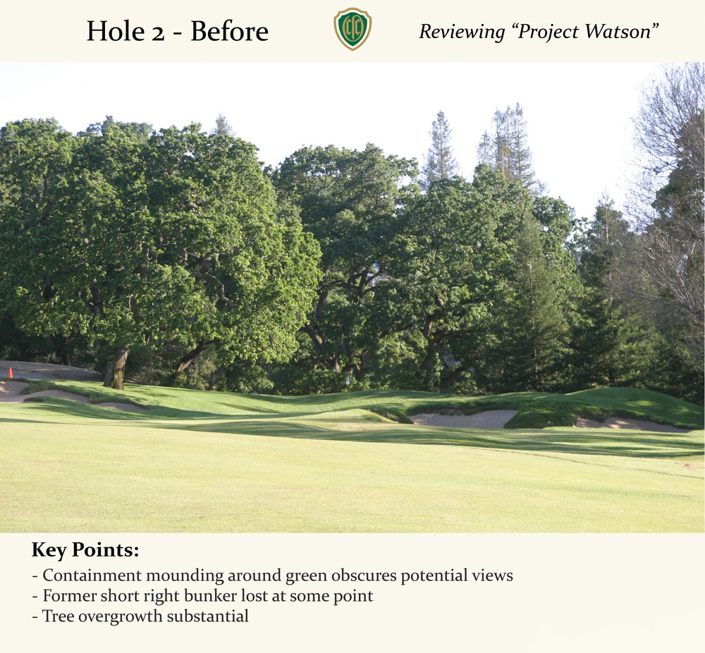 hochstein-design-orinda-before-after-hole-2-1