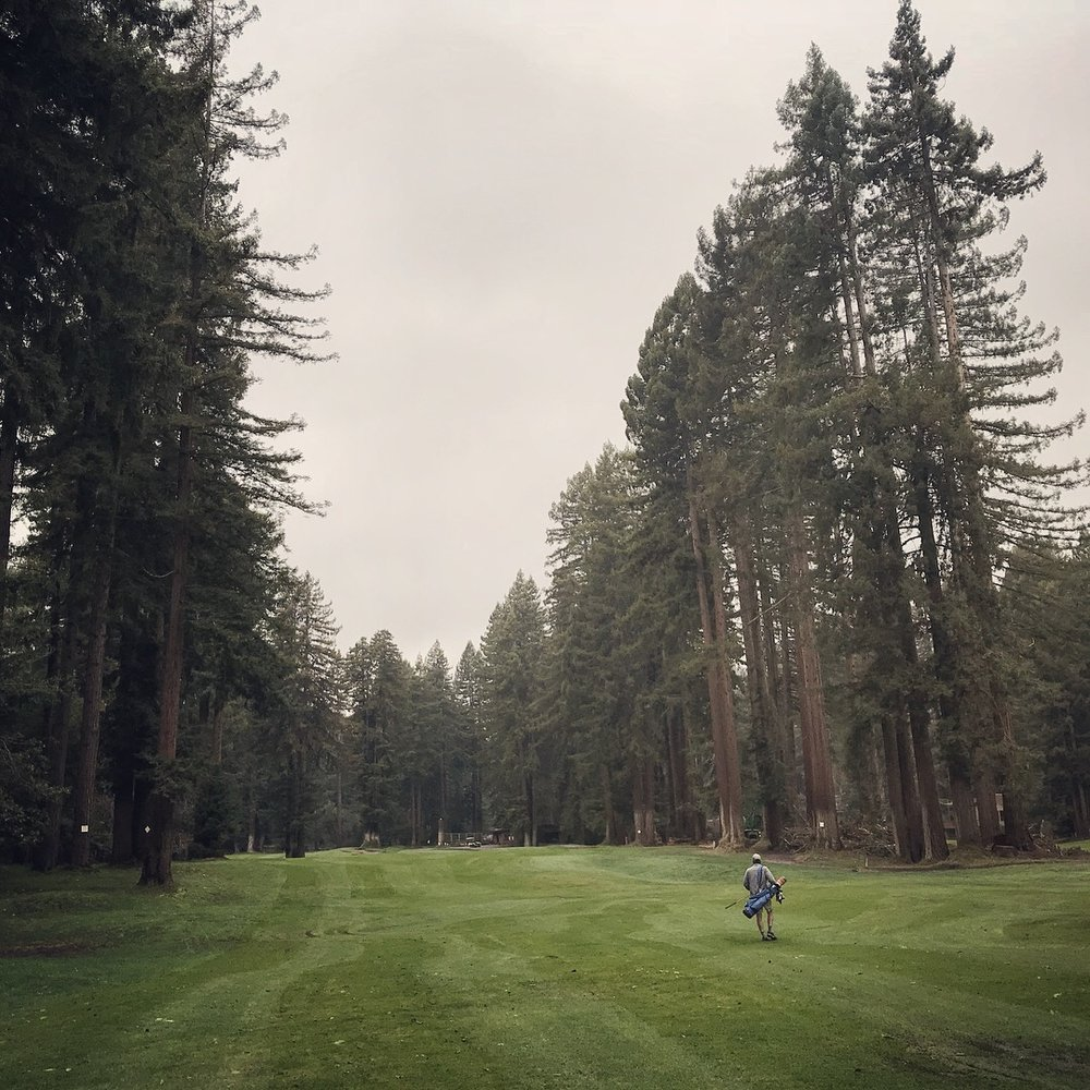 Golf Guide's Kyle Surlow provides a nice sense of scale among the mighty redwoods of Northwood.