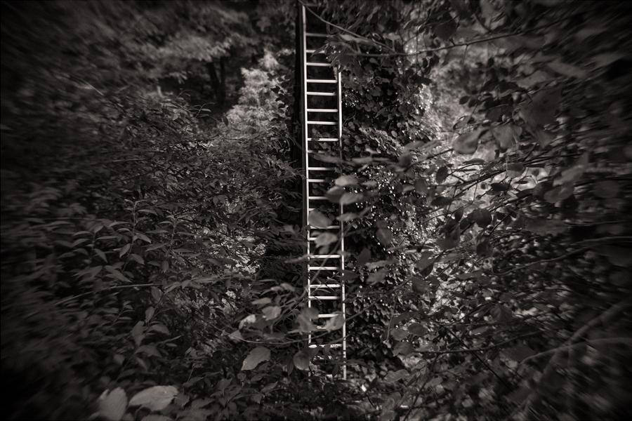 Untitled-18.jpg