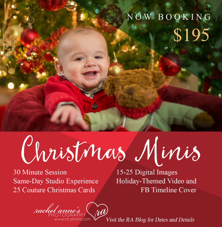2015 christmas card mini sessions book now rachel anne s