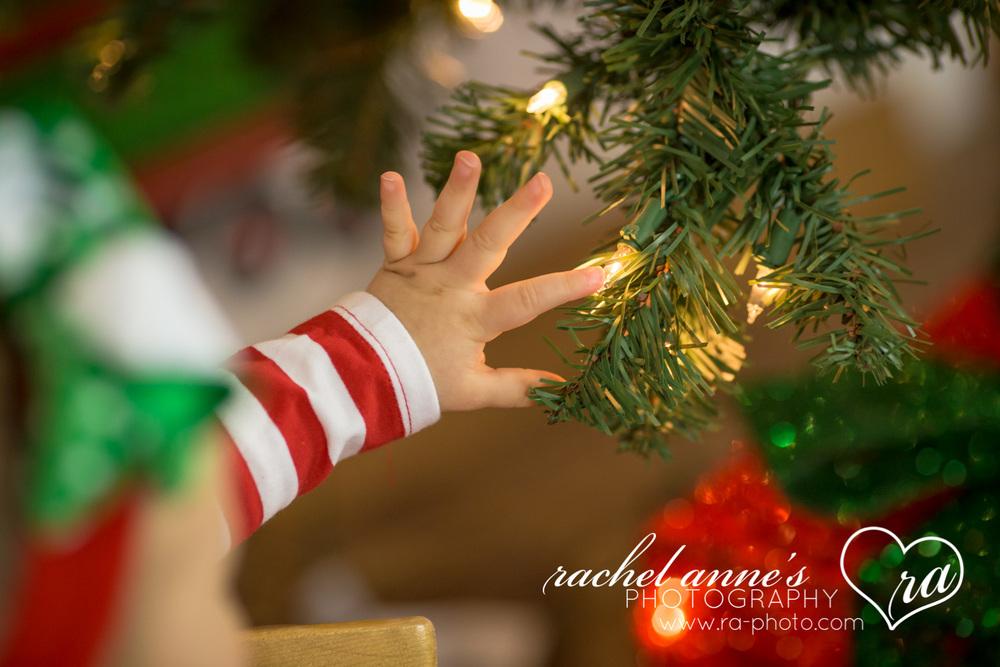007-SRL-CHRISTMAS-FAMILY-PORTRAITS.jpg