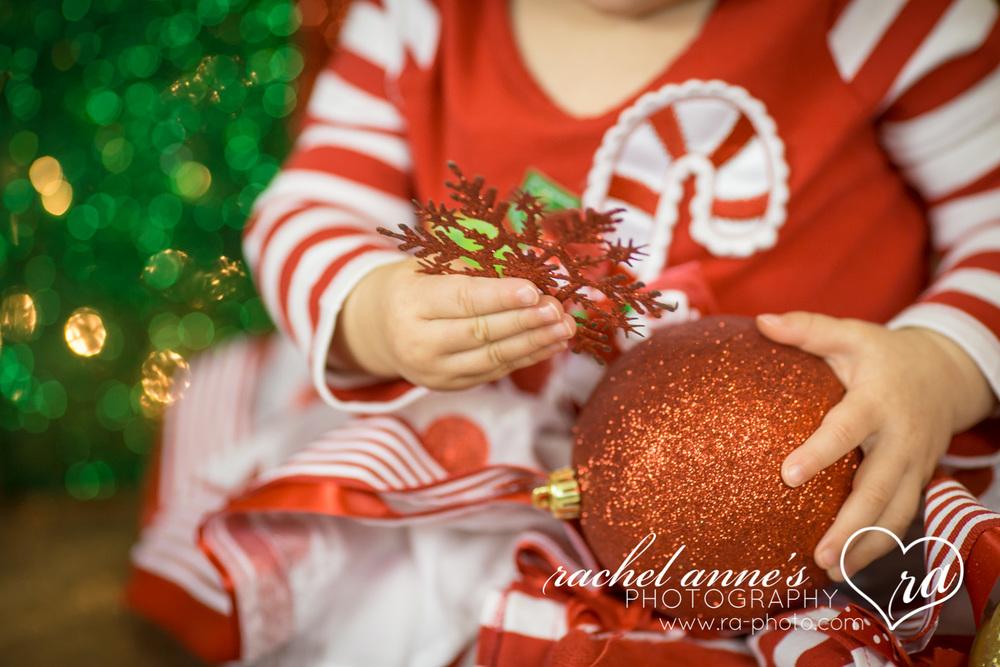 018-SRL-CHRISTMAS-FAMILY-PORTRAITS.jpg
