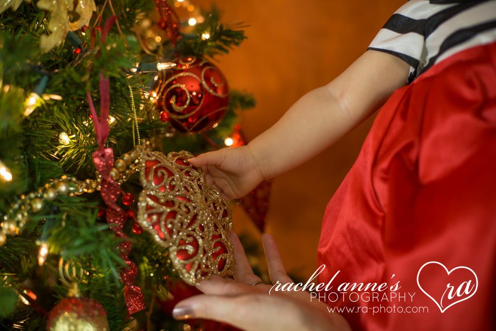 064-SRL-CHRISTMAS-FAMILY-PORTRAITS.jpg