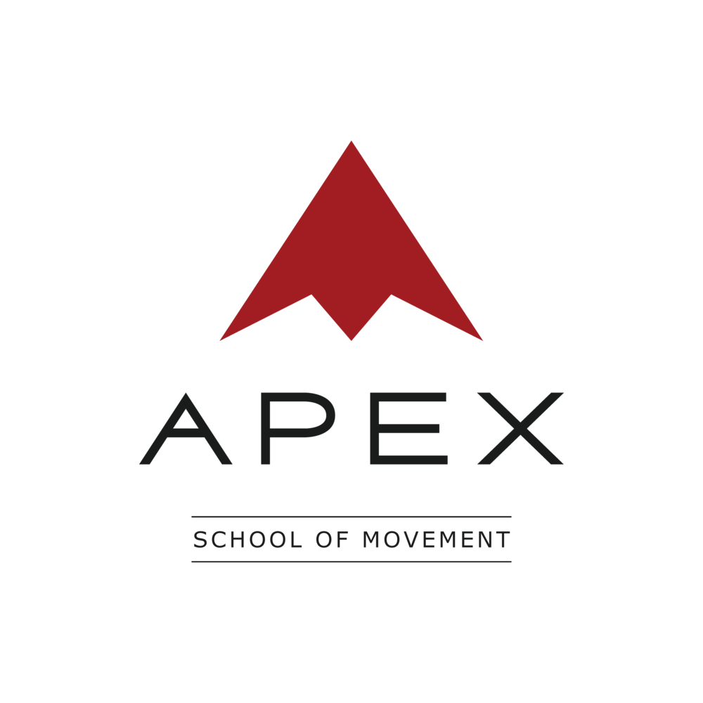 Parkour Educational Facility / Movement Lab / Professional team