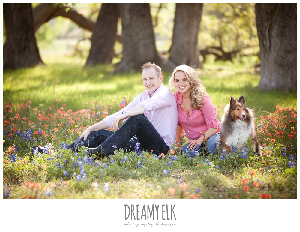 heather and clint, rustic engagement photo in bluebonnets with dog, college station, texas