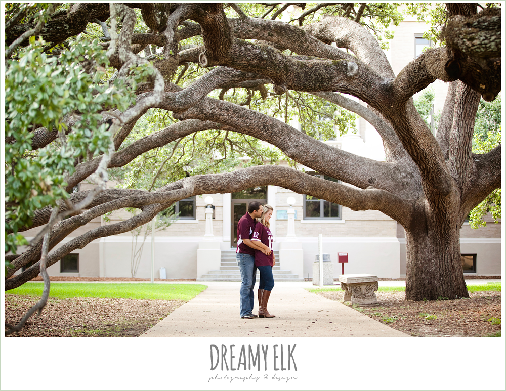 century tree engagement photo, texas a&m university