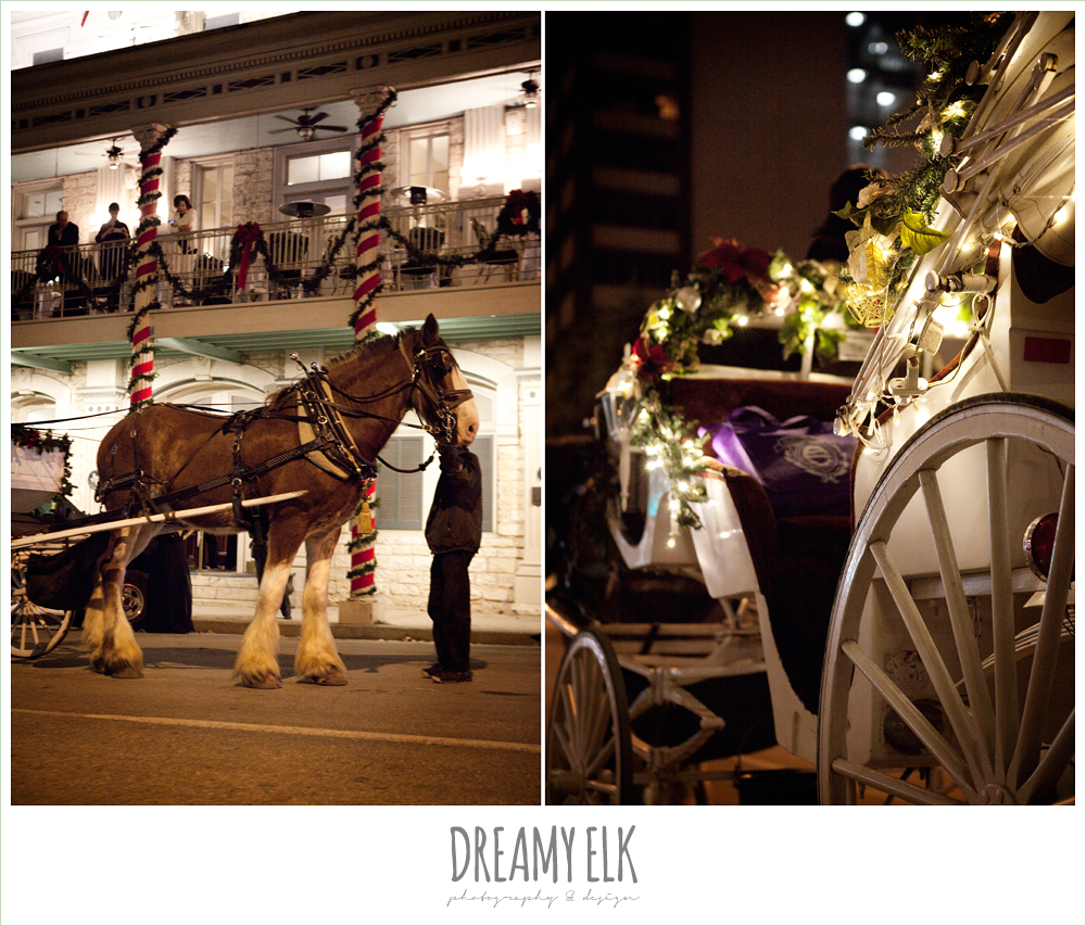 horse drawn carriage, wedding send off, winter wedding, austin wedding photographer, dreamy elk photography and design