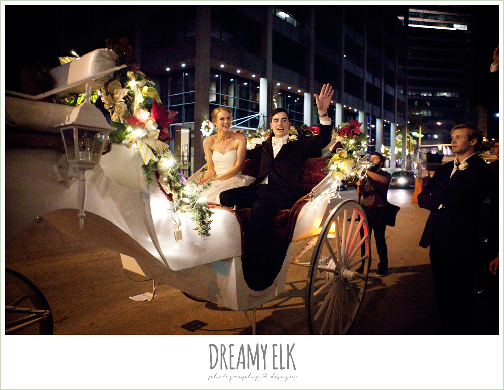 horse drawn carriage, wedding getaway, winter wedding, austin wedding photographer, dreamy elk photography and design