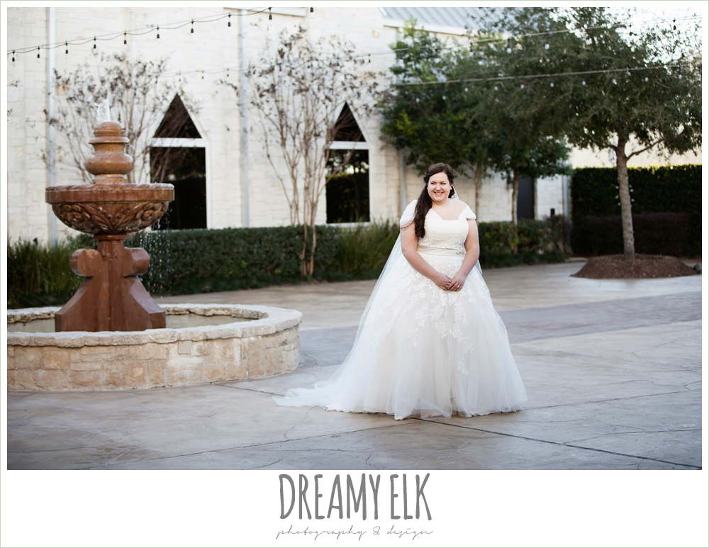 outside bridal photo, belle inspired wedding dress, cathedral length wedding veil {dreamy elk photography and design}