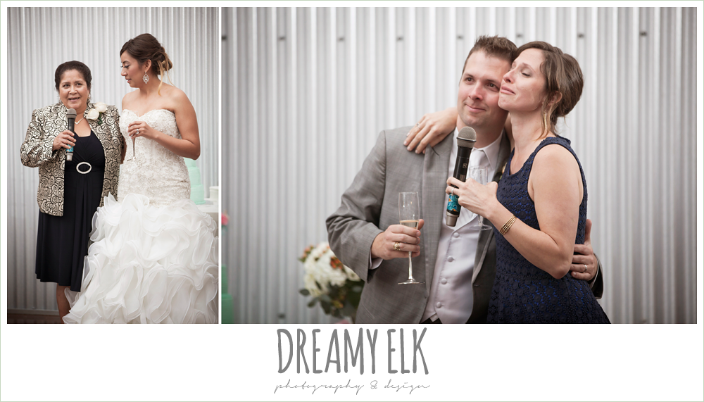 guests giving toasts at wedding, terradorna wedding venue, austin spring wedding {dreamy elk photography and design}