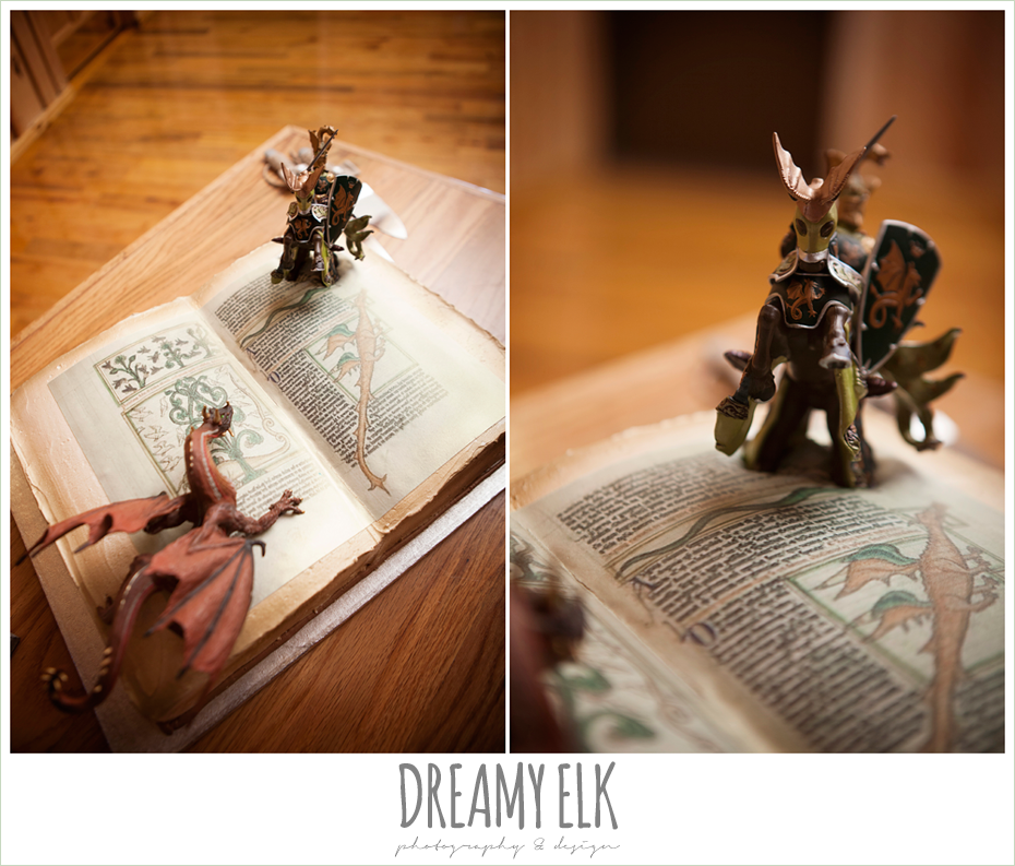 dream cakes, groom's cake with dragons, amber springs summer wedding photo {dreamy elk photography and design}