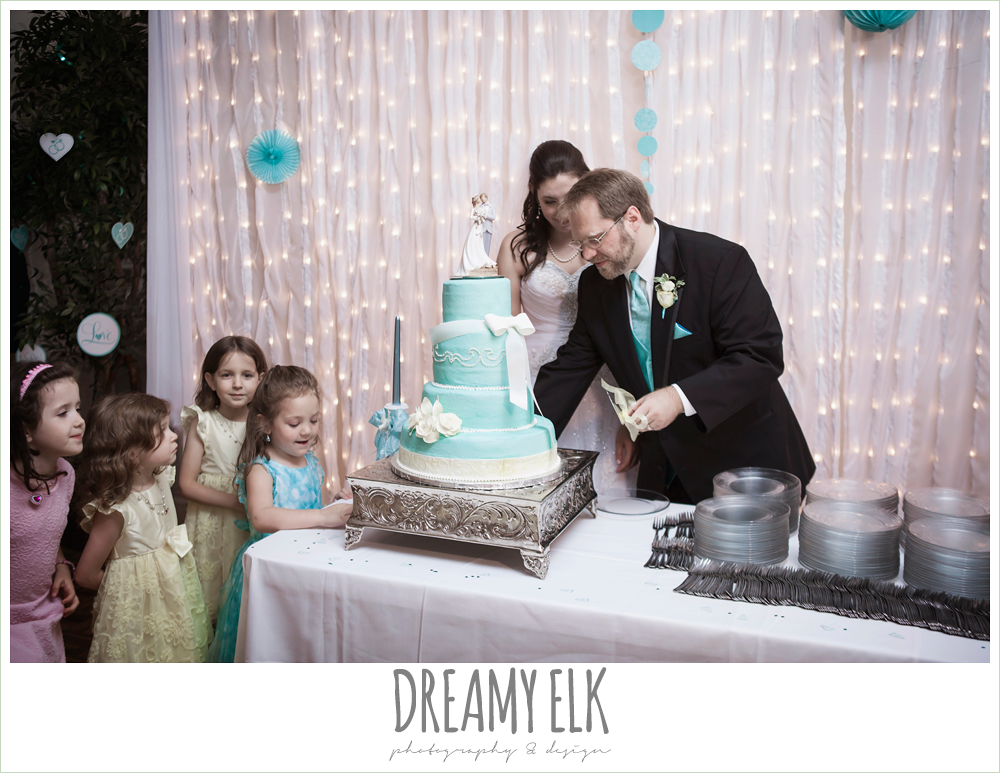 blue wedding cake, bride and groom cutting the cake, grin and bake custom cakes, indoor wedding reception, magnolia lake, summer wedding photo {dreamy elk photography and design}