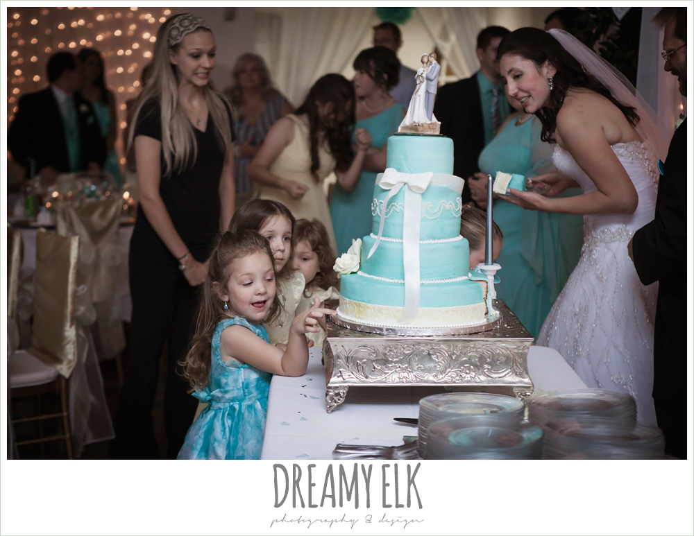 funny wedding photo, blue wedding cake, grin and bake custom cakes, indoor wedding reception, magnolia lake, summer wedding photo {dreamy elk photography and design}