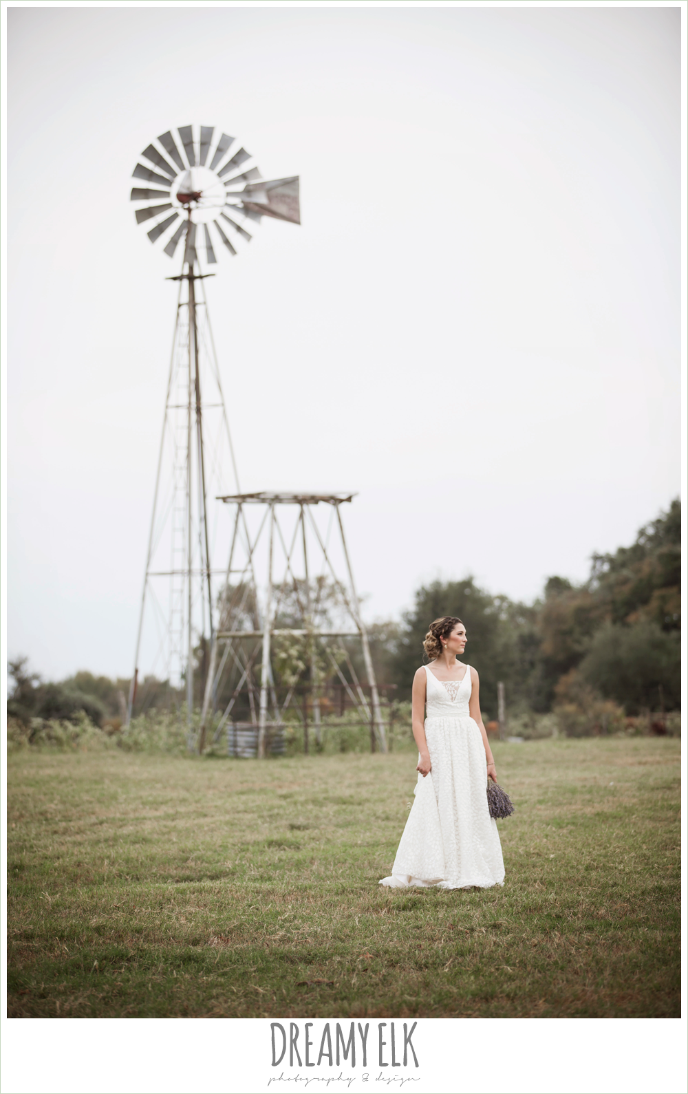 country rustic bridal portrait in a field, lavender wedding bouquet, the amish barn at edge {dreamy elk photography and design}
