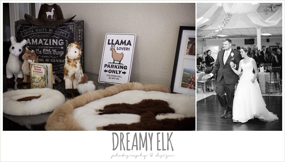 funny wedding reception decorations, llama, april spring houston wedding photo, {dreamy elk photography and design}