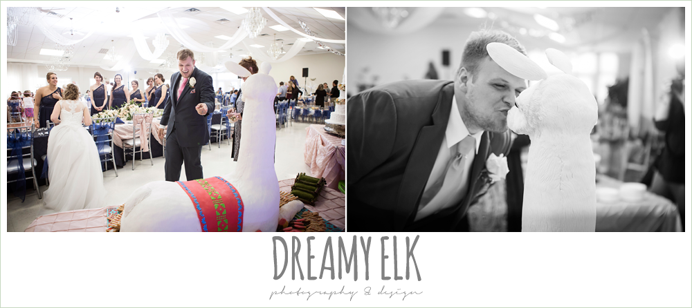 funny groom's reaction to groom's cake, llama cake, april spring houston wedding photo, {dreamy elk photography and design}