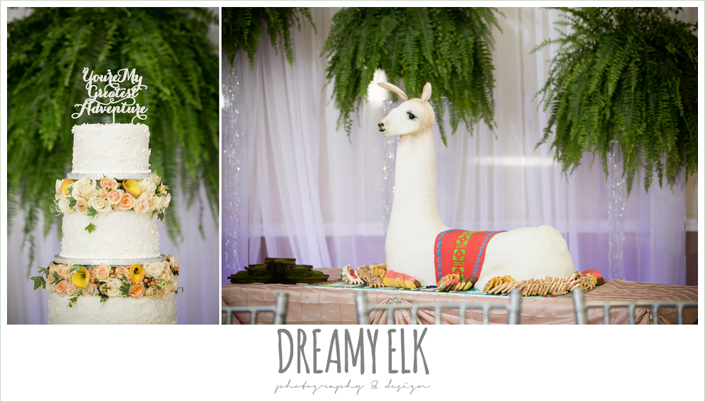 traditional white wedding cake with flowers, funny groom's cake, llama cake, april spring houston wedding photo, {dreamy elk photography and design}