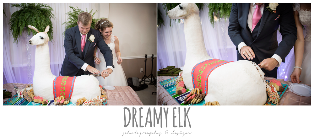 funny groom's cake, llama cake, april spring houston wedding photo, {dreamy elk photography and design}