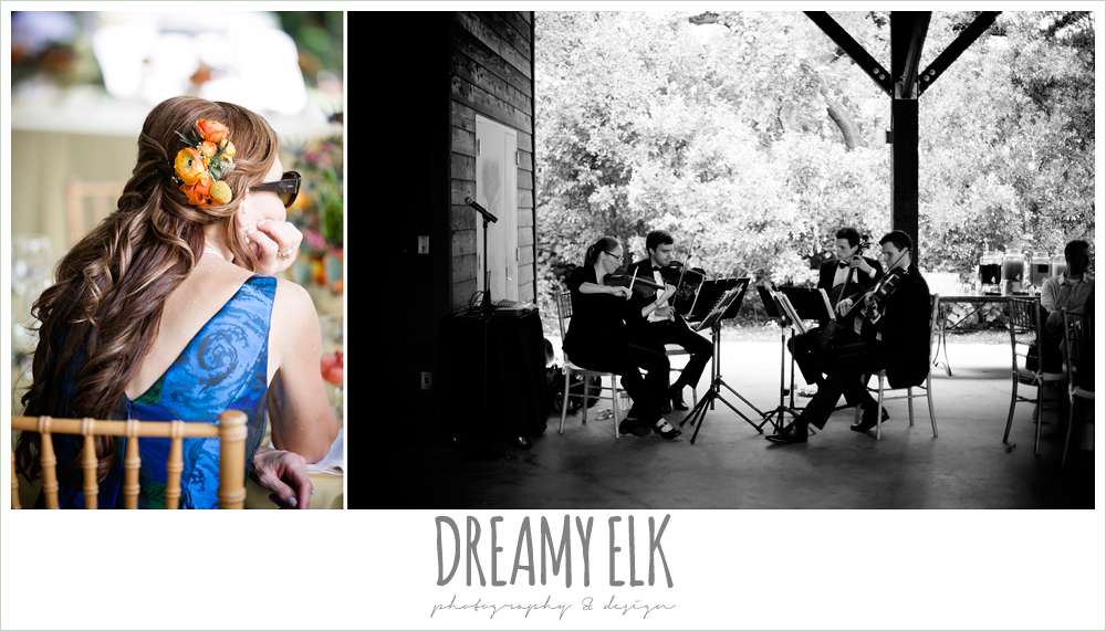 divisi strings stringed quartet, colorful outdoor sunday morning brunch wedding, hyatt hill country club, san antonio wedding photo {dreamy elk photography and design}