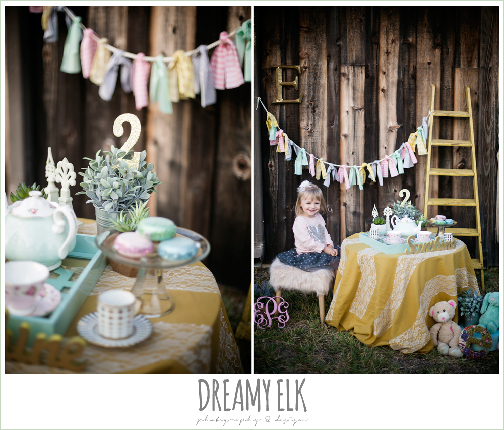 girl toddler photo, tea for two, tea party, two year photos, styled shoot {dreamy elk photography and design}