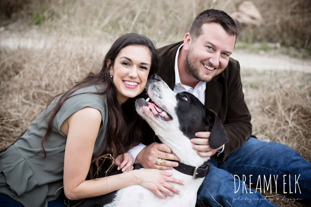great dane, fun anniversary photo shoot with dog, bull creek park, austin, texas {dreamy elk photography and design}